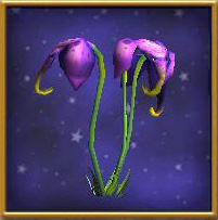 Stars of the Spiral - Rank 2 Plants